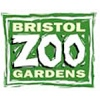 Bristol Zoo Review