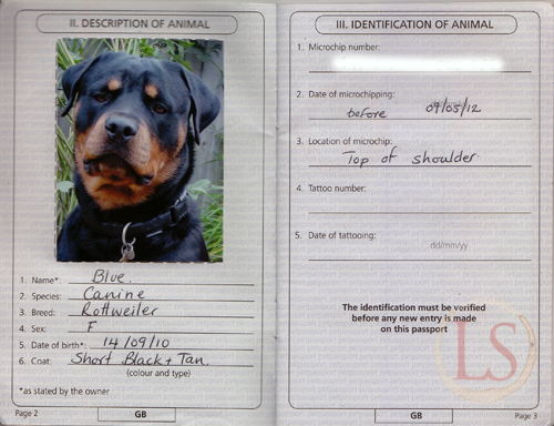 How Easy Take Dog France dog passports UK