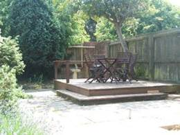 dog friendly holiday new forest