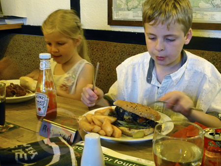 pubs for kids near brecon