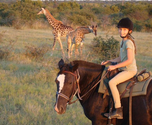 horse riding safari in south africa