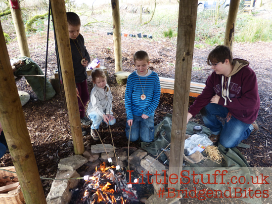 toasting marshmallows on bushcraft fire