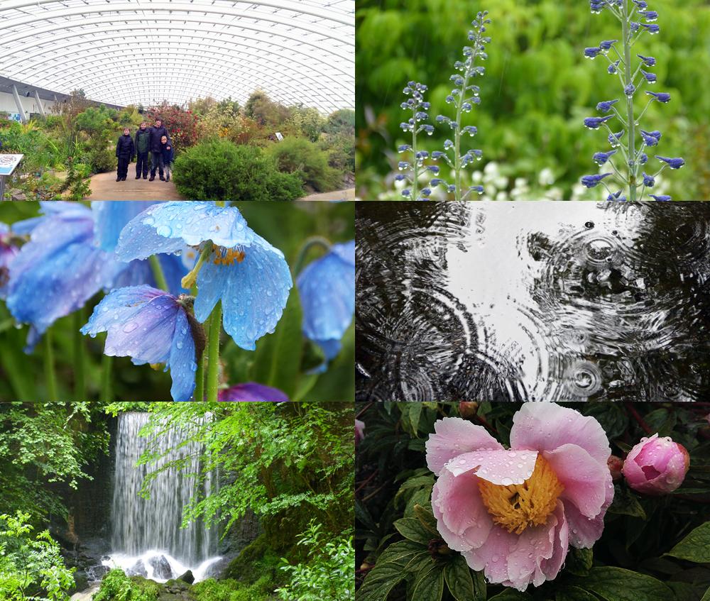 garden_of_wales