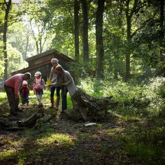 Save 10% at Forest Holidays – EXCLUSIVE FOREST HOLIDAYS CODE!