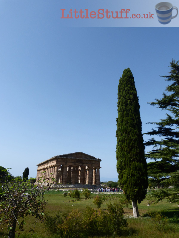 View-Paestum-from-road