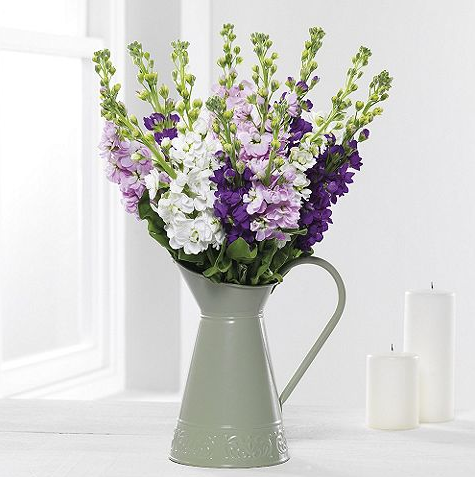 jug of scented stocks