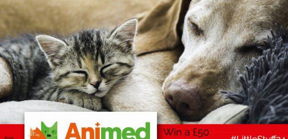 WIN a £50 Animed Pet Hamper! | #LittleStuff24