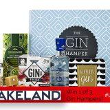 Win 1 of 3 Lush Gin Hampers From Lakeland!| #LittleStuff24