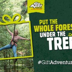 Win a Family Pass for Go Ape's Tree Top Junior Adventure!    #LittleStuff24