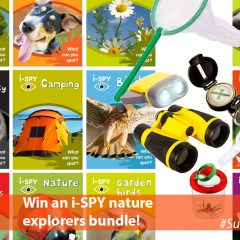 Win an i-SPY Nature Explorer Bundle | #SummerStuff
