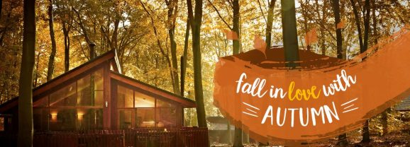 We've landed you a 15% Forest Holidays Code for October!
