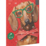 You'll love this – Advent Calendars for Pets