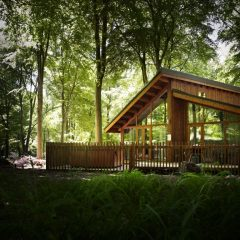 Green Holidays In The UK's Forests. Literally. (plus: Forest Holidays Discount Code!)