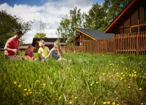 Forest Holidays Discount Code – 20% off before end of June!
