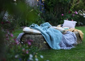 How to create an outdoor cinema in your back garden