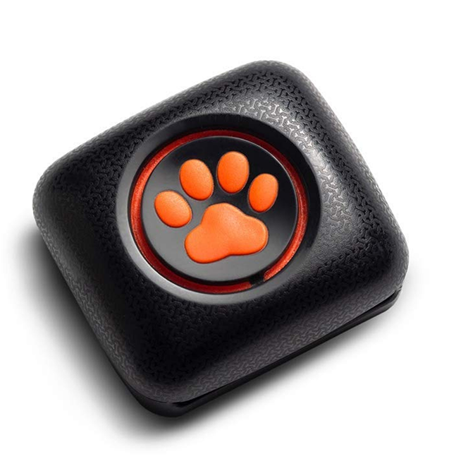 PitPat Dog Activity Monitor and Fitness Tracker