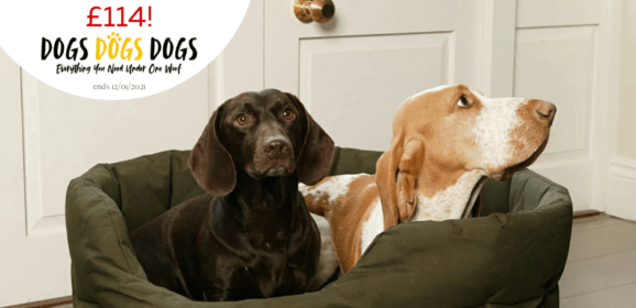 Win a Country Dog Waterproof Dog Bed – worth up to £114!