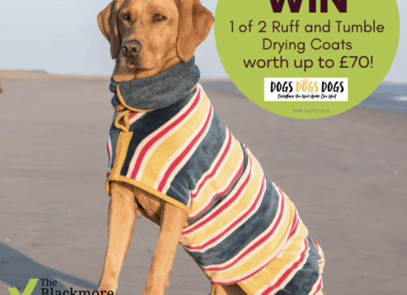 Win 1 of 2 Ruff and Tumble drying coats from DogsDogsDogs worth up to £70